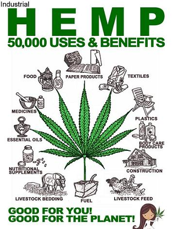 Industrial Hemp Uses and Benefits
